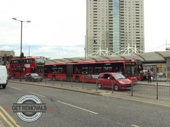 Edmonton-Buses